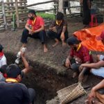Kerbau Keramat Kraton Surakarta Mati Proses Penguburan Layaknya Manusia