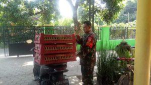 Anggota TNI di Jombang Sambi Beternak Bebek Berbuah Sukses