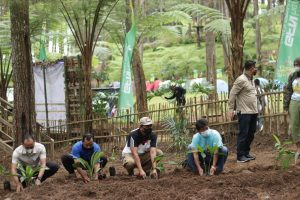 Wisata Jurang Senggani Jujugan Pas Edukasi Tanaman Herbal
