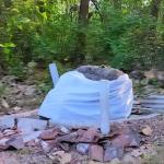Dibalik Mitos Watu Blorok Di Hutan Dawar Blandong Mojokerto