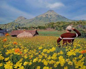 Kampung Organik Brenjonk Destinasi Wisata Patut Dikunjungi