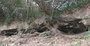 Goa Unengan Selatan Makam Keramat Nyai Pandansari Mojokerto Dipercaya Jadi Sarang Ular Sanca