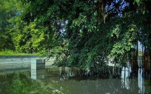 Pemandian Sekar Putih Kota Mojokerto Peninggalan Belanda Dipercaya Bisa Sembuhkan Stroke