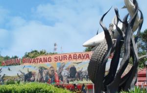 HUT Surabaya ke 728 Kebun Binatang Surabaya Bagi Bagi Diskon
