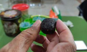 Heboh, Batu Bisa Bergerak Sendiri Ditemukan Warga Jember