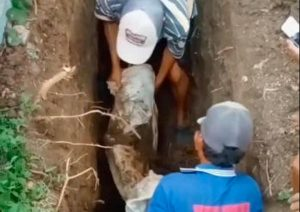 Penemuan Mayat Masih Utuh Saat Menggali Kuburan Gegerkan Warga