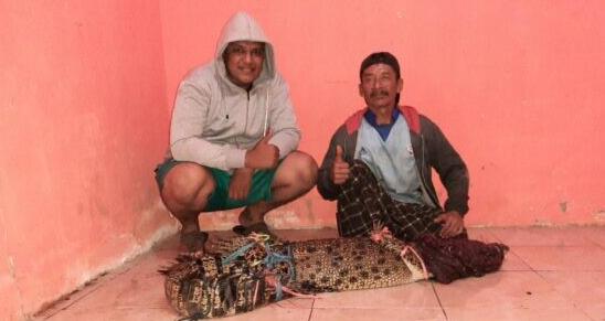 Sarung Sakti Penangkap Buaya Di Kali Sadar Mojokerto