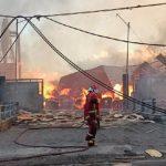 PT Graha Papan Lestari Probolinggo Pabrik Pengolah Kayu Ludes Terbakar