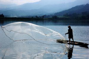 Video Ikan Di Waduk Selorejo Mati Masal Jadi Tanda Tanya