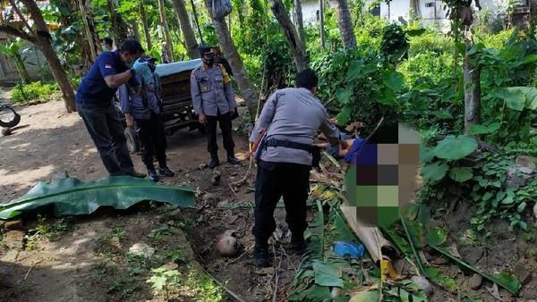 Kakek Di Blitar Tewas Terjatuh Dari Pohon Kelapa Setinggi 15 Meter Saat Petik Pohon Kelapa