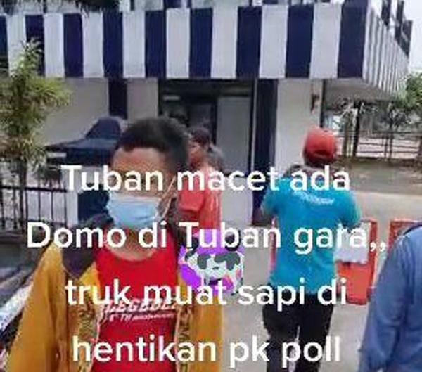Viral Sopir Truk Sapi Ngeluruk Pos Polisi